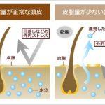 頭皮の乾燥は、お肌の老化へ