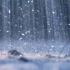 こんないや~な梅雨時をさわやかに過ごすヘアケアの秘策!